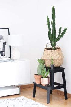 Diese 5 Zimmerpflanzen verwandeln deine Wohnung in eine grüne Oase A home without plants would not be home to me. That's why I show you today my 5 favorite and most easy-care indoor plants. Inspired Homes, Indoor Design, Balcony Decor, Interior, Potted Plants Patio Ideas, Pallet House, Home Decor, Easy Care Indoor Plants, House Plants Decor