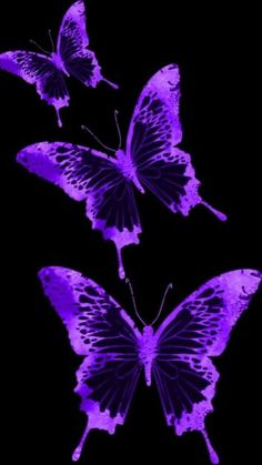 defaultr-b - 0 results for purple aesthetic Dark Purple Aesthetic, Lavender Aesthetic, Violet Aesthetic, Rainbow Aesthetic, Aesthetic Colors, Purple Aesthetic Background, Aesthetic Space, Aesthetic Pastel, Aesthetic Food