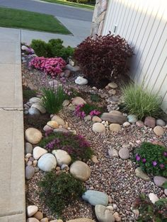 Another view of my rock garden from the porch. 0 June 2014. Nice erosion control - rain flows down toward the bottom of the garden.