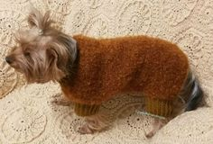 For Dogs:small dog clothes/ Dog Clothes/ Grey от LyudmilaHandmade