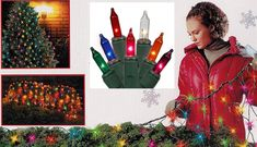 4' x 6' Multi-Color Mini Twinkle Net Style Christmas Lights - Green Wire