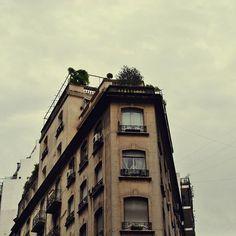 En contraste contra el cielo nublado #buenosaires #arquitectura #recoleta #contraste #cielo #nublado #lluvia #miercoles #mirandabosch