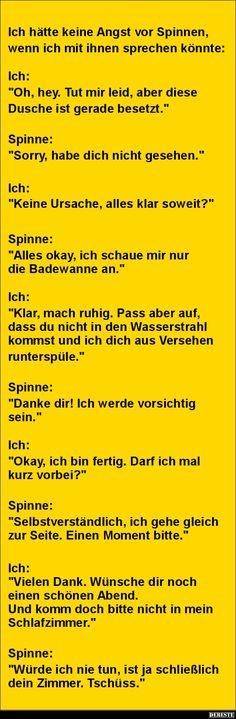 Friedensgespräche mit einer Spinne.. | DEBESTE.de, Lustige Bilder, Sprüche, Witze und Videos