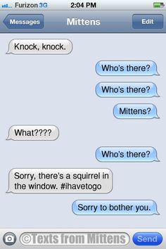 Texts from Mittens - NEW Daily Texts from Mittens: The Sorry Edition ...