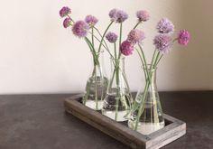 Rustic Laboratory Bud Vase WATERBURY