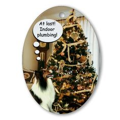 Sheltie Xmas Fun Ornament Funny Oval Ornament by CafePress. This Sheltie ornament is the perfect Christmas gift for Shetland Sheepdog lovers. Funny Oval Ornament Instantly accessorize bare wall-space with our Oval Ornament. Makes great room or office accessories, fun favors for birthday parties, wedding or baby shower Ornaments, or adding a unique, special touch to gift-wrapped packages. Comes with its own festive. Price: $12.50