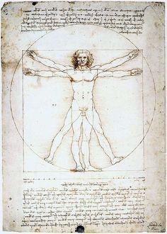 Dit is een Vitruviusman van Leonardo da Vinci, het bekendste voorbeeld van een universele mens. Hij was een architect, uitvinder, ingenieur, filosoof, natuurkundige, scheikundige, anatomist, beeldhouwer, schrijver, schilder en componist uit de Florentijnse Republiek, tijdens de Italiaanse renaissance. Hij wordt gezien als het schoolvoorbeeld van het renaissance-ideaal van de homo universalis en als genie