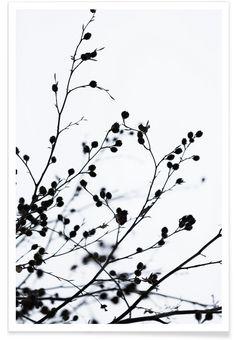 Winter Silhouettes 1 als Premium Poster von Mareike Böhmer | JUNIQE