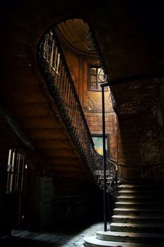 Drama on the staircase. Indoor curved staircase, wood and rod iron staircase. Good photography angle of dramatic staircase. Abandoned Cities, Abandoned Mansions, Abandoned Houses, Old Houses, Take The Stairs, Stair Steps, Stairway To Heaven, Old Buildings, Stairways