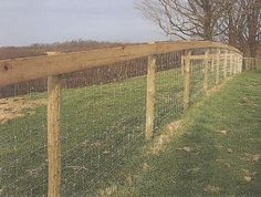 Farm Fencing: Horse High, Chicken Tight and Bull Strong - Modern ...