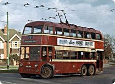 The trolley bus in Reading stopped running in 1962 Reading Town Centre, Reading Buses, Luxury Sailing Yachts, Bus Coach, London Bus, Busses, Public Transport, Abandoned Places, Vintage Photos