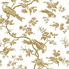 Jolie Oiseau Cornflower