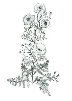 Conception de tatouage pavot par Katt Frank 12975