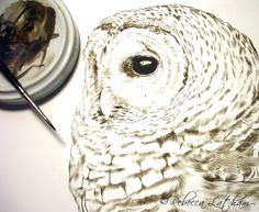 Rebecca Latham Wildlife Art - Watercolor Paintings