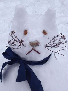 Cutest Snow Cat Ever! <3