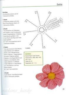[flores+6.6.jpg]