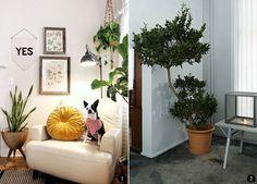Do's and Don'ts en la decoración de tu casa | Conkansei.com