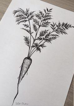 Carrot, Drawing, Dotwork, Staedtler, Fineliners Art, Artwork, Artist, Sketch Tattoos, Tattoo Ideas, Tattoo Designs, Geometric Tattoos