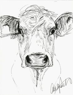Cow Sketch by AshleyRicketson on Etsy, $15.00