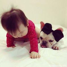 お似合いだね♥️#frenchbulldog #frenchie #dog #daughter #babygirl #フレンチブルドッグ #女の子 #赤ちゃん