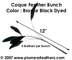 Hat milliner's coque feathers