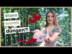 Tomaten richtig düngen – Wann, wie, mit welchen Dünger? - Wurzelwerk