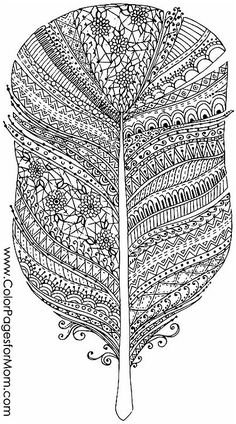 feathers coloring page 9