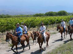 Bodega Tapiz, Sustainable Wine Tourism Practices, Mendoza 2012, Best Of Wine Tourism