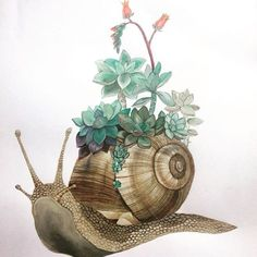'The Succulent Snail' Fantasy Kunst, Fantasy Art, Gouache Painting, Watercolor Paintings, Snail Tattoo, Snail Art, Ecole Art, Watercolor Animals, Anime Comics