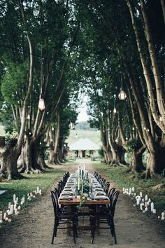 outdoor reception - photo by Figtree Wedding Photography http://ruffledblog/beautiful-outdoor-wedding-inspiration-from-australia