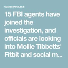 Image result for Mollie Tibbetts suspect