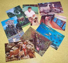Vintage Florida's Silver Springs Postcards by WellIWasSavinIt, $12.00