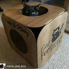From @mimo_and_kirry -  Our lovely furriends at @catfurnature sent us this amazing pod for us to play in!! It even has our names on it!  I've claimed this as mine and haven't let Kirry in yet. Thank you so much @catfurnature!!  If you want your own customized pod check them out! They're SO awesome!!