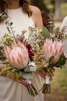 Another option for bridesmaids Em + Oliver's Bridesmaids king protea bouquets Photo: Anna Tenne Flor Protea, Protea Bouquet, Protea Flower, Flower Bouquets, Purple Bouquets, Peonies Bouquet, Pink Bouquet, Brooch Bouquets, Wedding Ideas