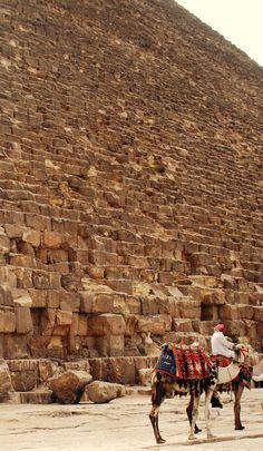 CAMELLOS ADORNADOS - Close up of a pyramid in Egypt