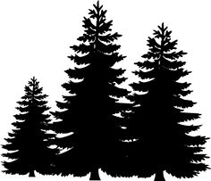 This is best Pine Tree Clipart Pine Tree Silhouette Clip Art for your project or presentation to use for personal or commersial. Pine Tree Silhouette, Forest Silhouette, Silhouette Clip Art, Silhouette Projects, Mountain Silhouette, Silhouette Pictures, Flower Silhouette, Tree Clipart, Tree Svg