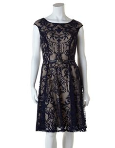 Navy Lace Fit and Flare DressNavy Lace Fit and Flare Dress, Navy/Nude