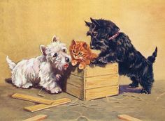 SCOTTISH TERRIER CHARMING WESTIE, KITTEN AND SCOTTIE DOG GREETINGS NOTE CARD | eBay