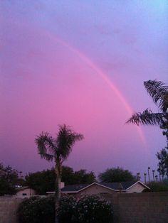 Arizona rainbow