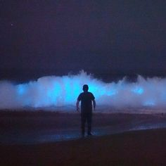 Mark Girardeau, who owns Orange County Outdoors, witnessed bioluminescent waves off Newport Beach, California Beach At Night, Venice California, Crashing Waves, Natural Phenomena, Newport Beach, Orange County, Night Time, Trip Planning, Seaside