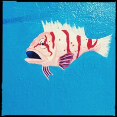 tropical fish : o'farrell brothers : o'farrell / larkin street : sf