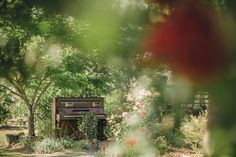 Country wedding | Garden piano | Ashley Oostdyck