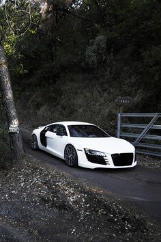 Audi R8 ... Ok maybe this will be my next car