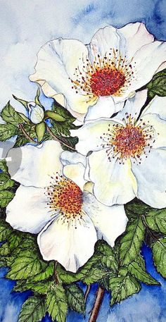 """Weisse Rosen 2"" Painting art prints and posters by Maria Inhoven - ARTFLAKES.COM"