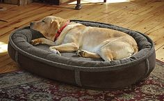 Just found this Memory+Foam+Bolster+Dog+Bed+-+Wraparound+Fleece+Dog+Bed+--+Orvis on Orvis.com!