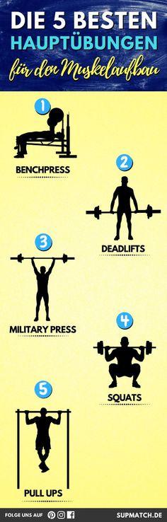 Die 5 besten Hauptübungen für den Muskelaufbau.