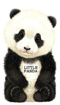 Little Panda broad book by L. Rigo $7.99