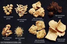 Cómo cocinar con soja texturizada - http://www.gastronomiavegana.org/recetas/como-cocinar-con-soja-texturizada/