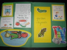 sample lapbook