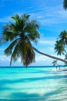 Tropical Paradise • Shades of Blue • The Ocean